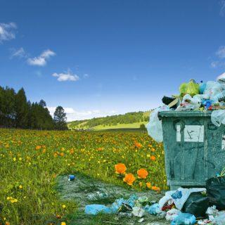 Ein überfüllter Müllcontainer auf einer blühenden Wiese
